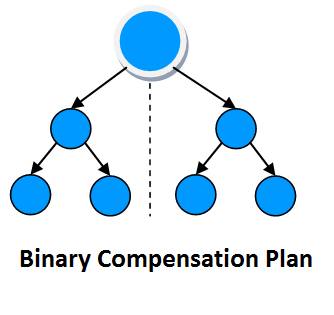 Binary Mlm Software Pro Edition